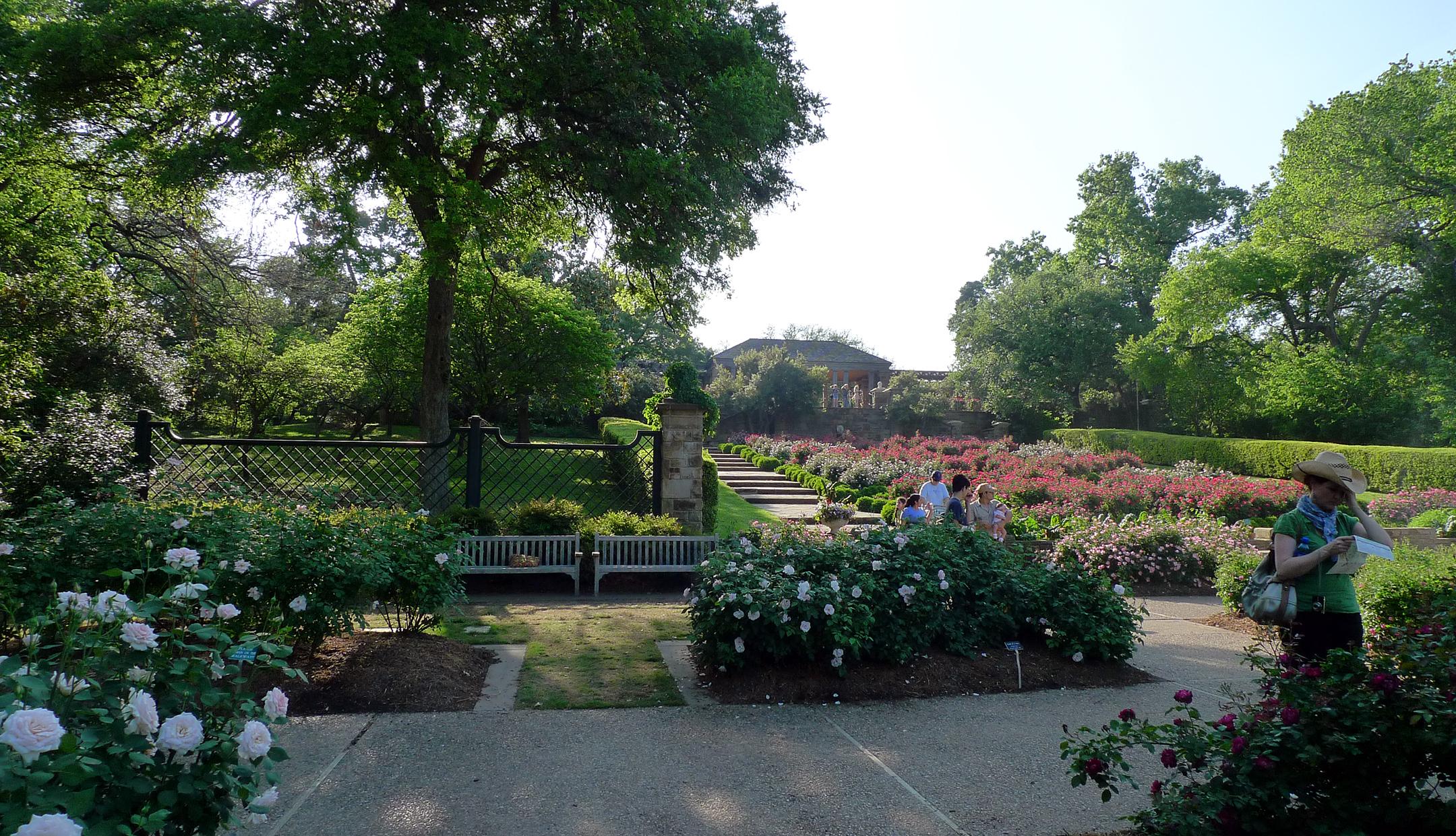 Allison Crosbie Fort Worth Botanical Garden