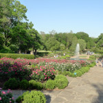 fort worth gardens